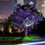 Достопримечательности Гуанчжоу. Ночной Гуанчжоу