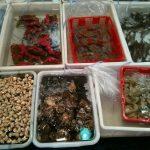 Рынки в Гуанчжоу. Рыбный рынок