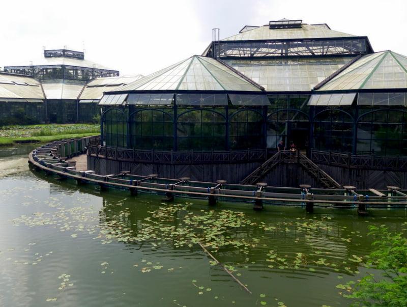 ботанический сад гуанчжоу