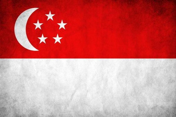 флаг сингапурв