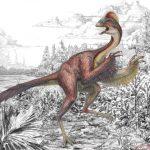 В Китае обнаружили останки динозавра