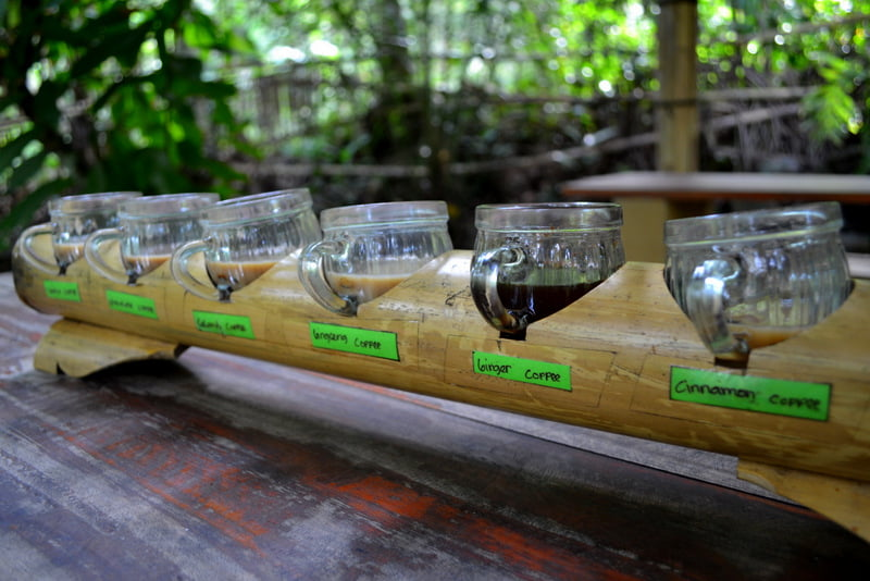 Копи лювак (Kopi Luwak) на Бали